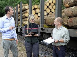 Steuerliche Erleichterungen sollen den Waldeigentümern helfen.