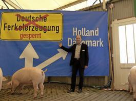 Die Jungsauen zeigten wenig Interesse am Fototermin vor dem Protestplakat des Schweinezuchtverbandes, zu dem Hans-Benno Wichert ins Schweinezelt geladen hatte.