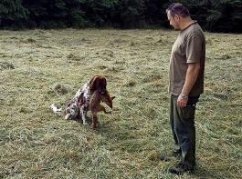 Jagdpächter Jürgen Höferlin mit seinem Jagdhund Capper, der einen Fuchs apportiert