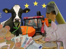 Nach drei Anläufen wurde eine gemeinsame Position gefunden, wie die EU-Agrarmittel künftig in Deutschland verwendet werden sollen.