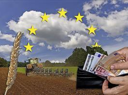 Die CDU geht davon aus, dass mittelfristig in der europäischen Agrarpolitik das System der Flächenprämien auslaufen wird.