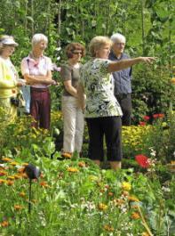 Solch eine Blumenpracht und Pflanzenfülle bringt Gartenfreunde und Gartenfreundinnen beim Besuch der Gärten am Tag des offenen Bauergartens ins Schwärmen.