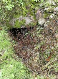 Auch Dohlen für Bäche, die  einen  größeren Durchmesser  haben, können Wölfen einen Weg auf die Weide bieten. Sie sollten daher stets  abgedichtet werden.