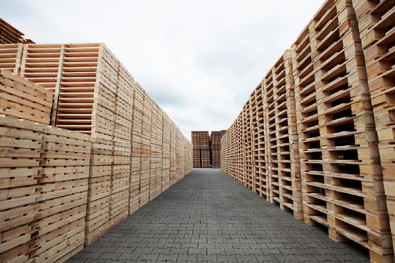 Zur Lage der Holzpackmittelindustrie <br>in Deutschland
