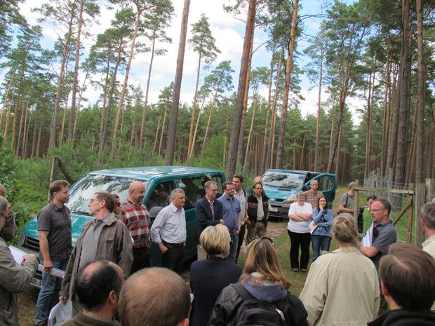 Seit 30 Jahren in Brandenburg am Puls des Waldes