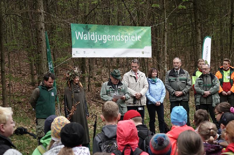 Sächsische Waldjugendspiele: Wald statt Klassenzimmer