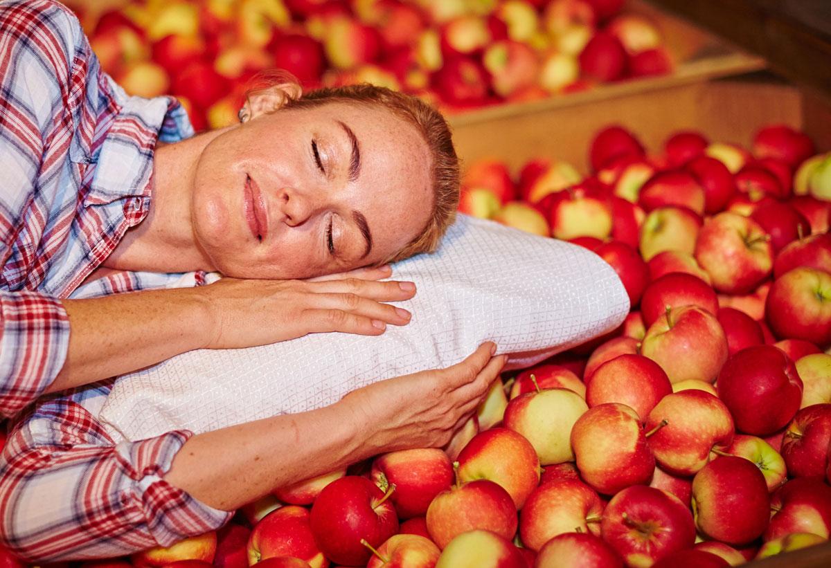 Winterschlaf hält Äpfel frisch