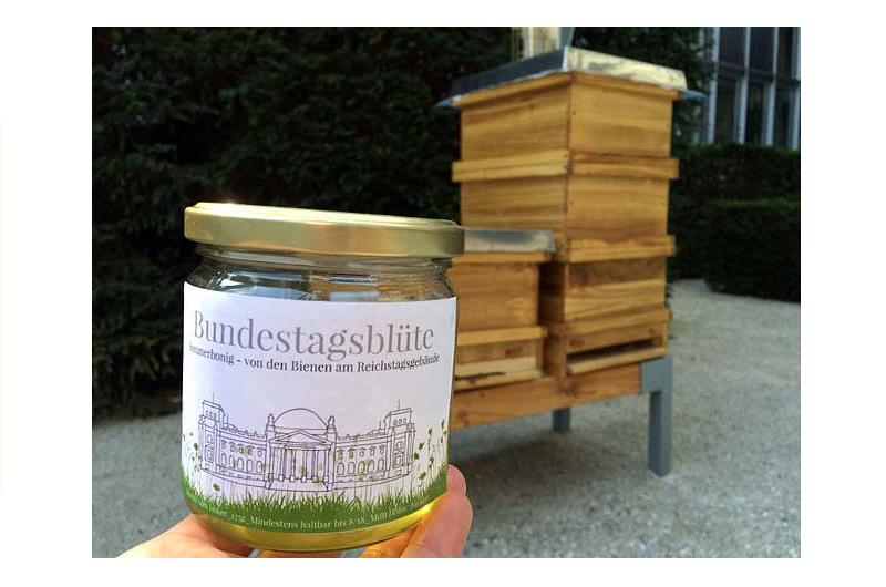Ich hab noch Honig in Berlin