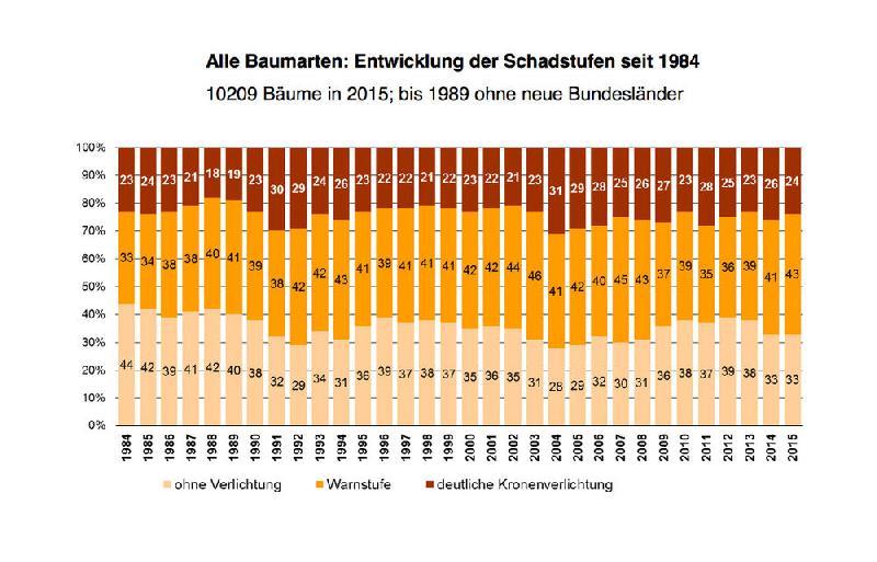 Waldzustandserhebung 2015 in Deutschland