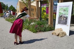 Die Bayerische Kartoffelkönigin Jacqueline I. auf der Landesgartenschau im Pavillon des Staatsministeriums für Ernährung, Landwirtschaft und Forsten die regionale Knolle.